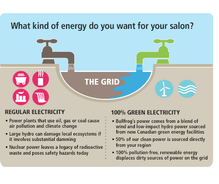 What kind of energy do you want for your salon? Regular Electricity or 100‰ Green Electricity?